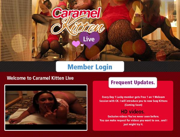 Caramel Kitten Live Working Password
