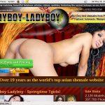 Ladyboy Ladyboy Discounted Deal